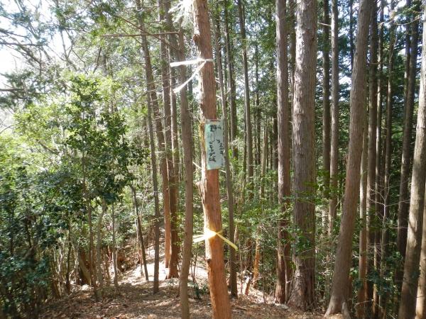 天覚山・大高山 062