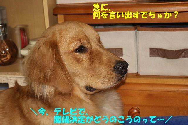 IMG_9647.jpg