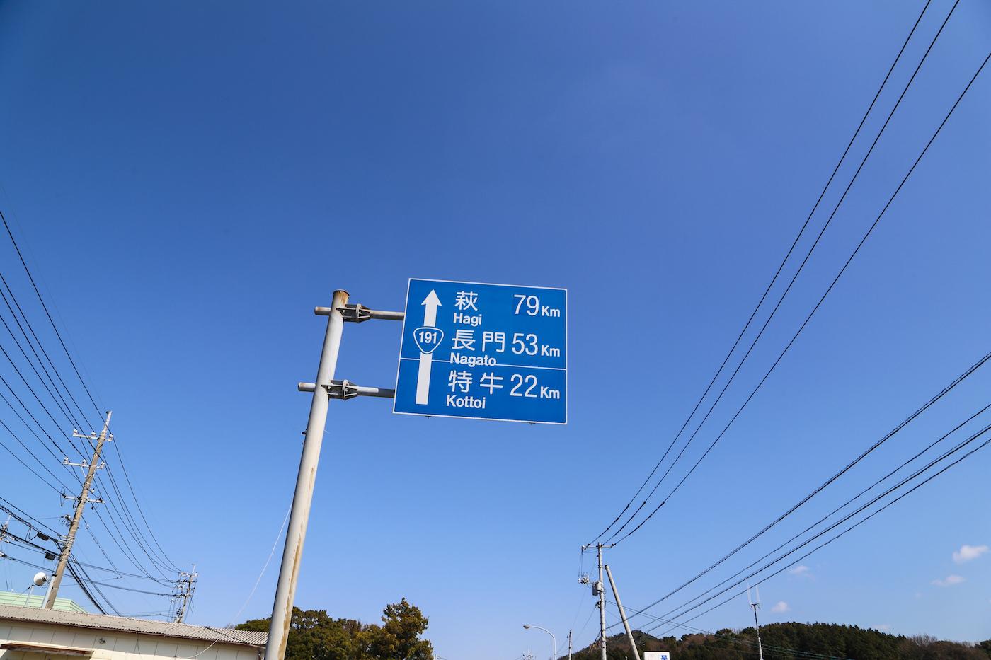IMG_1551-5.jpg
