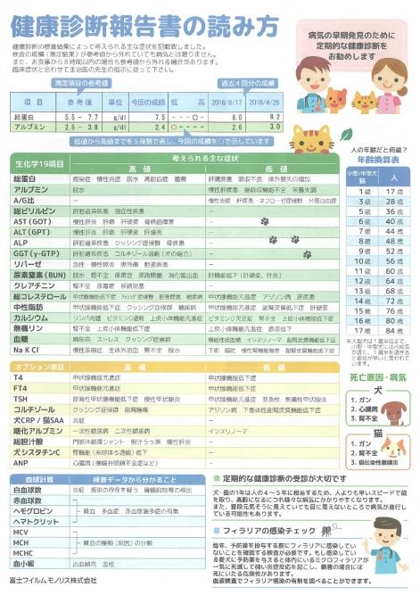 エルの血液検査(精密)表面 30127