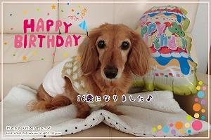 16歳の誕生日1