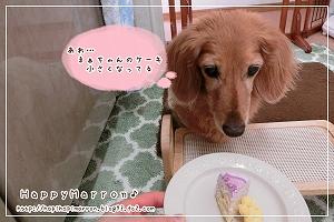 誕生日ケーキ5