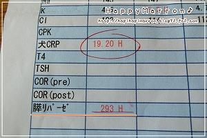 急性膵炎疑い1