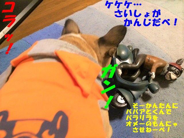 IMG_9280 (1)