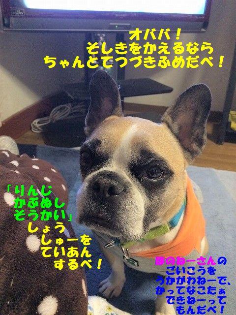 IMG_9300_20180313145159e4e.jpg