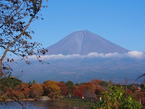 富士山と紅葉と田貫湖