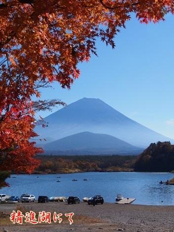 紅葉と富士山