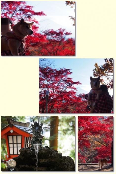 新倉山浅間神社にて