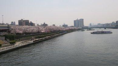 ○墨田公園