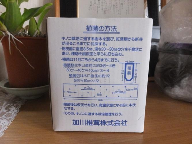 DSCF7846_1.jpg