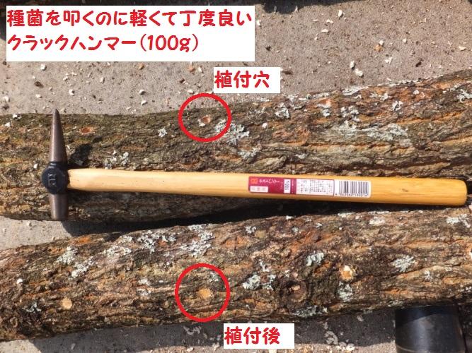 DSCF8001_1.jpg