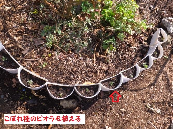 DSCF8163_1.jpg
