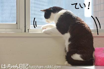 窓際に座って