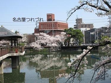3・29鶴舞公園3