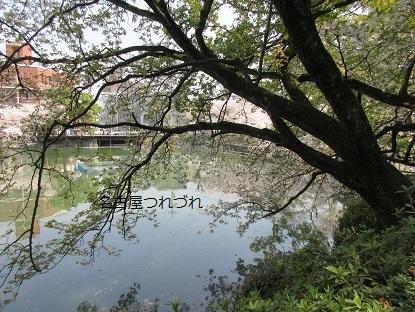 3・29鶴舞公園4