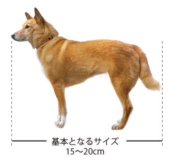 size15-20.jpg