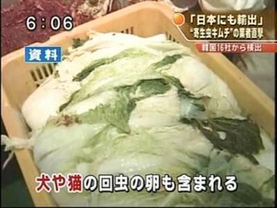 韓国産キムチから寄生虫の卵、野良犬の糞が見つかる 日本へも輸出1