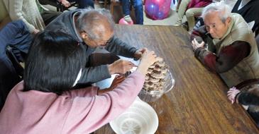 椎茸収穫2