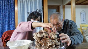 椎茸収穫4