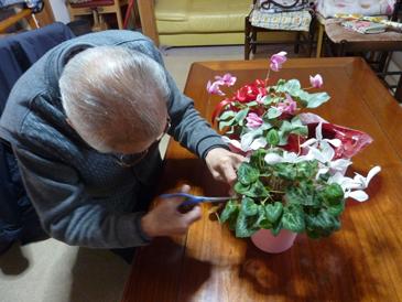 花の手入れ2