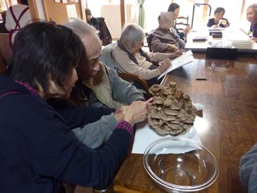 椎茸収穫1