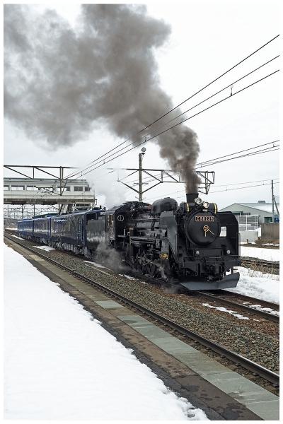 P3080134-2bo.jpg