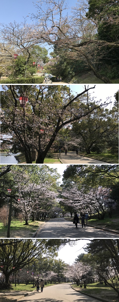 20180327丸亀城2