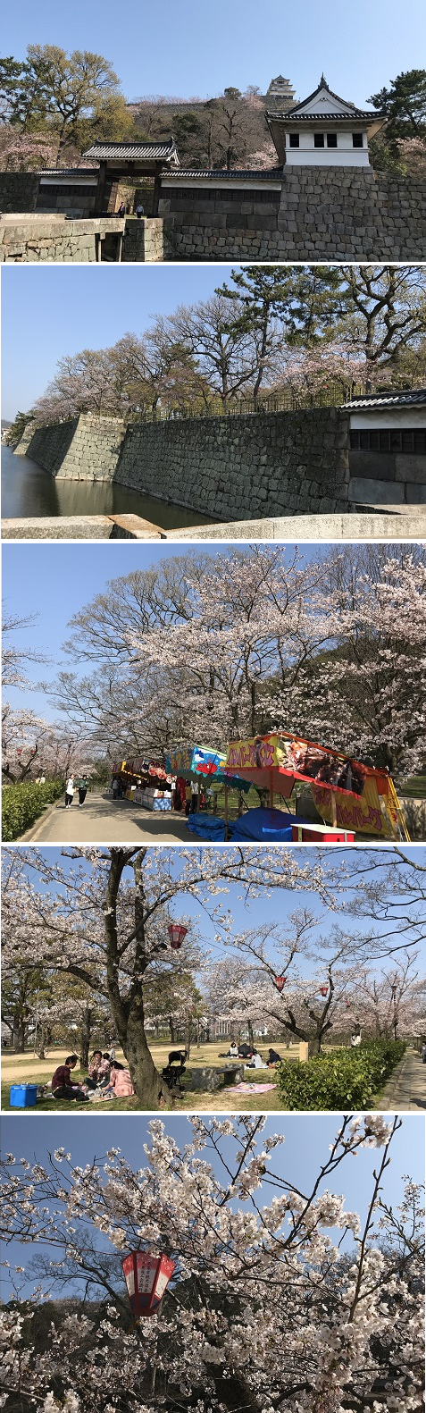20180327丸亀城1