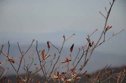 桧沢岳からの展望6