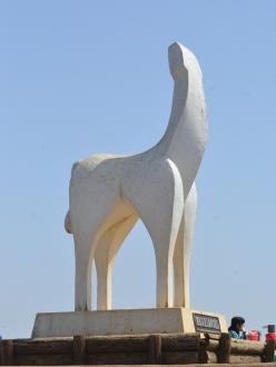 陣馬山の白馬
