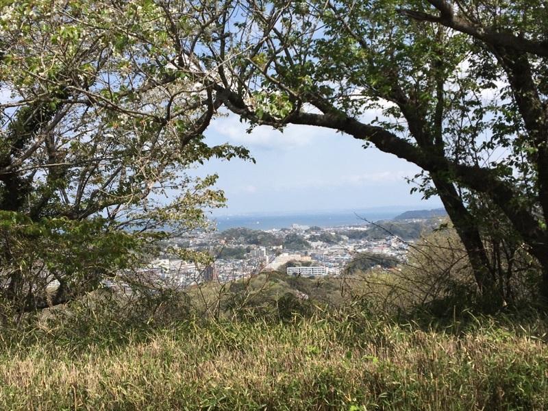 衣笠山から街を一望