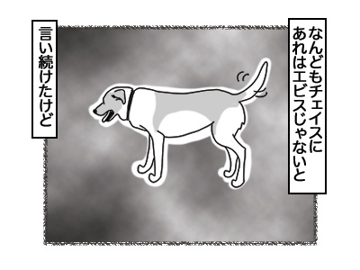 03032018_dog4.jpg