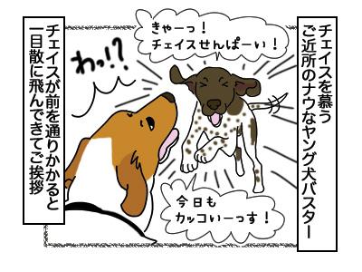 05032018_dog1.jpg