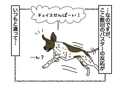 05032018_dog2.jpg