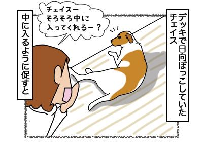 06032018_dog1.jpg