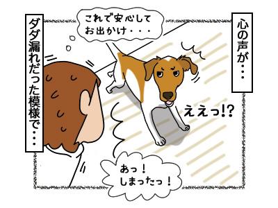 06032018_dog3.jpg