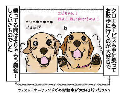 07032018_dog1.jpg