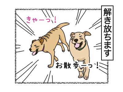 07032018_dog3.jpg