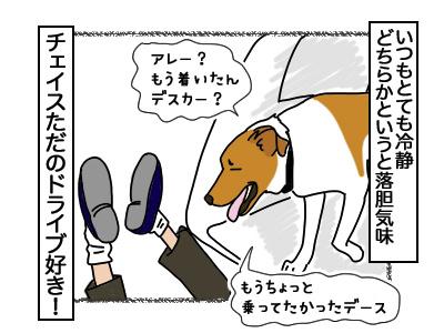 07032018_dog6.jpg