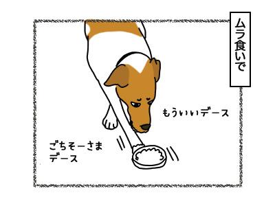 12032018_dog2.jpg