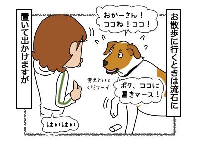 14032018_dog2.jpg