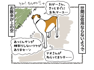 14032018_dog3.jpg