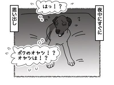 14032018_dog6.jpg