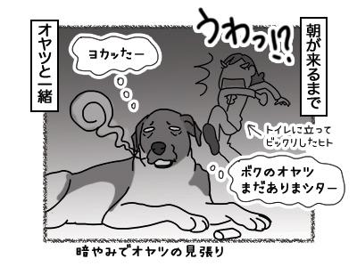 14032018_dog7.jpg