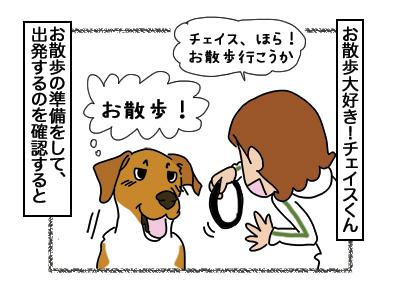 15032018_dog1.jpg