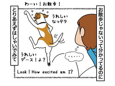15032018_dog4.jpg