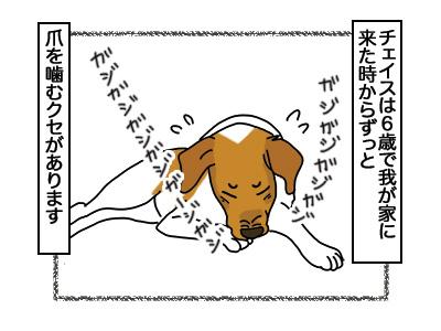 16032018_dog1.jpg