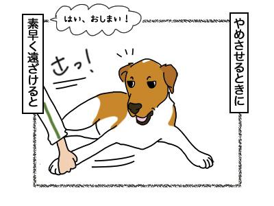16032018_dog2.jpg