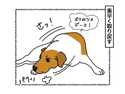 16032018_dog3.jpg