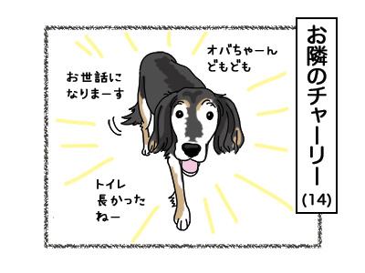 19032018_dog2.jpg